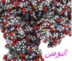 albumine-dans-les-urines-250x212
